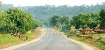 Border Security : Guinea Bissau, Senegal Concert