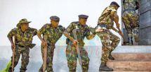 Afrique australe : la menace terroriste