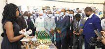Accompagnement des Pme : la France et le Cameroun en connexion
