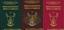 Passports : Cameroon Goes In For International Standards