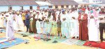 Fête du mouton à Douala : le sacrifice en signe d'amour