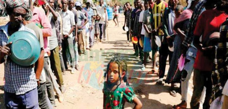 Tigray Conflict  : How To Get Out of the Blockage?