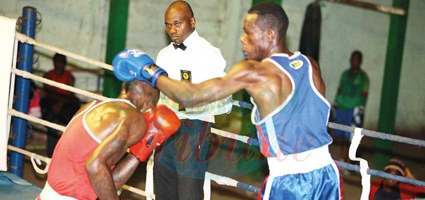 African Amateur Boxing Championships: Cameroon Grabs Eleven Medals