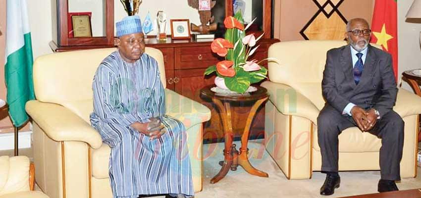 Cameroon-Nigeria Relations: Security, Cooperation Ties Reviewed