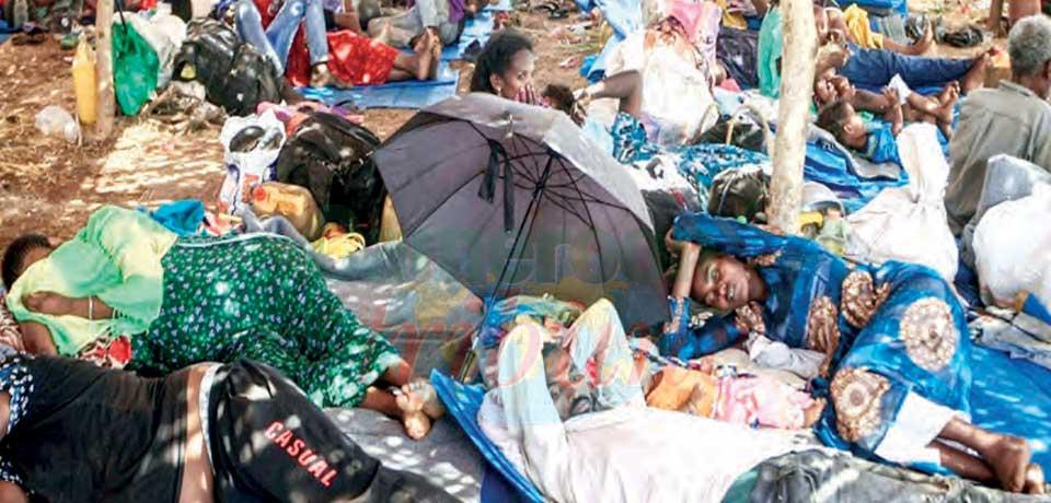 Conflit dans le Tigré : le gouvernement appelle au cessez-le-feu