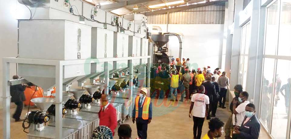 Coffee Processing : Productive Plant Commissioned For NW