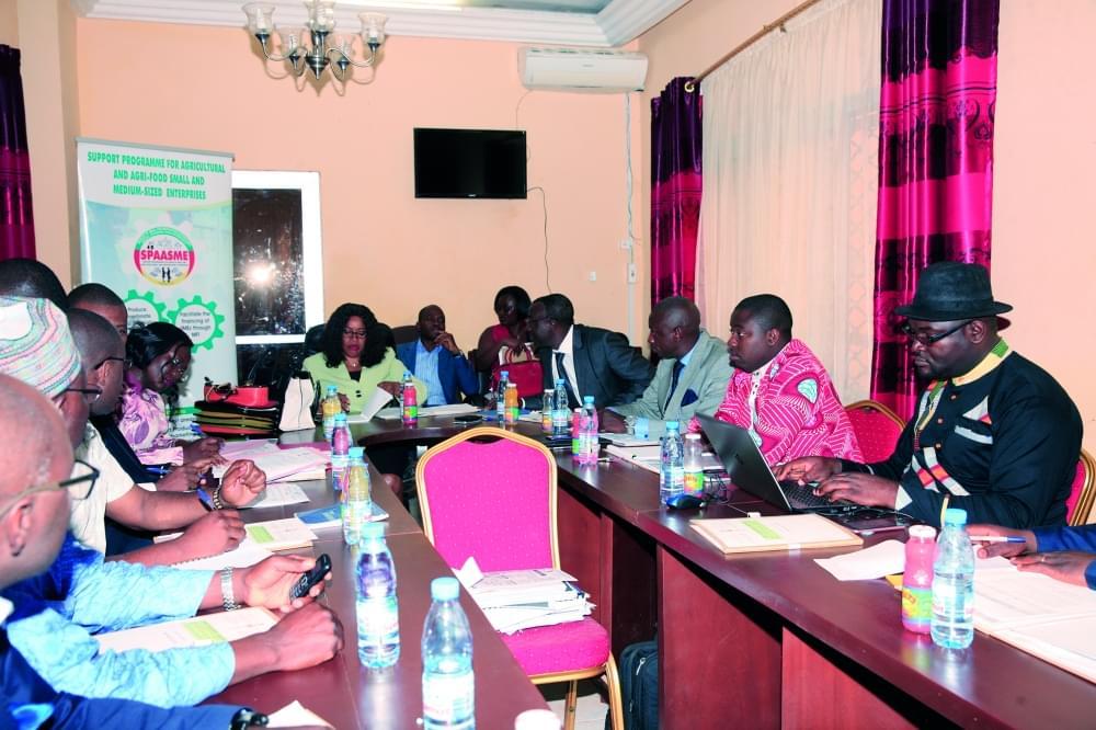 Financement des projets agricoles: déjà 215 chèques services distribués