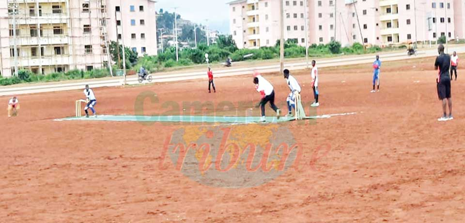 Cricket : Cup of Cameroon Finals This Weekend