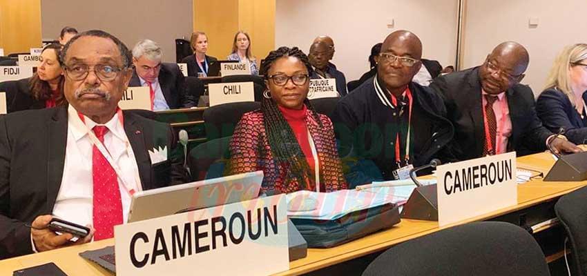 La délégation camerounaise à Genève.