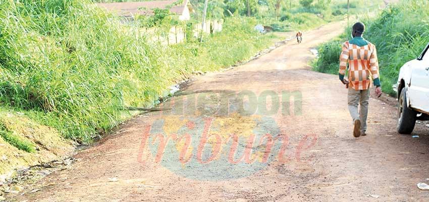 Route Ebolowa-Kribi, par Akom II : bientôt, le début des travaux