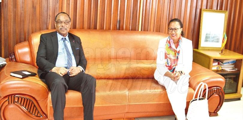 Cameroun-BIT: on se concerte