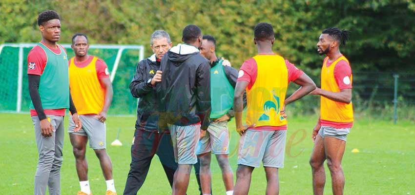 Cameroon-Japan Friendly: Indomitable Lions Earmark Strategies