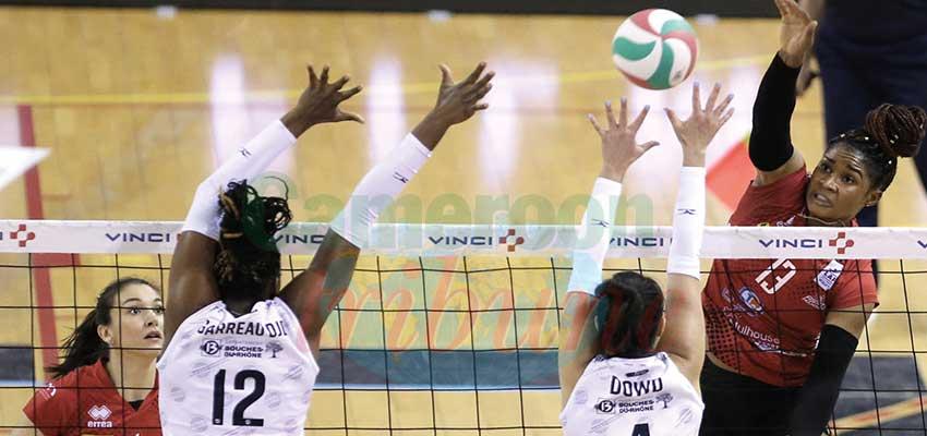 Volley-ball : l'affiche des Camerounais de France