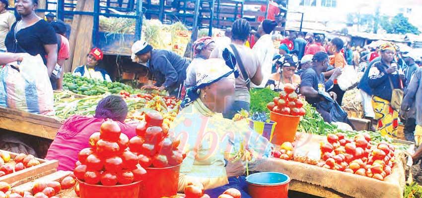 Vivres frais : certains prix en chute libre