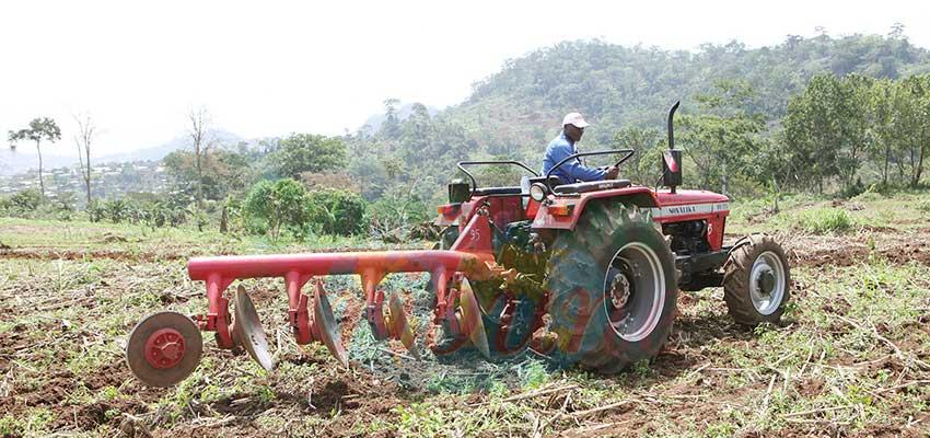 Chocs économiques liés au Covid-19 : le Cameroun résiste bien