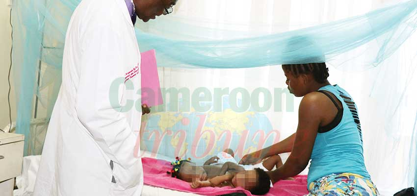 Bébés siamois de Yaoundé: bientôt référés à Lyon