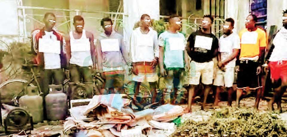 Drogue : 11 suspects aux arrêts
