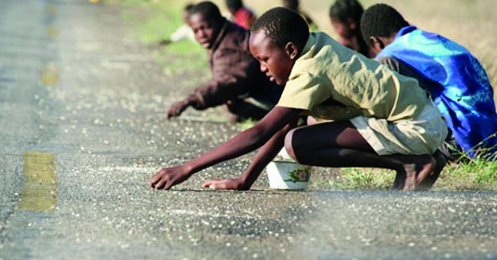Zimbabwe : IMF Calls For Urgent Aid