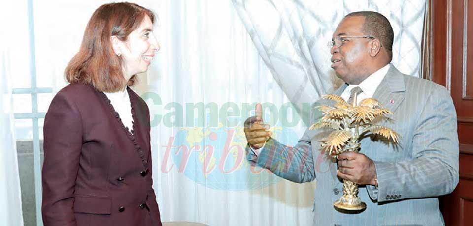 Cameroun-Turquie : une coopération fructueuse