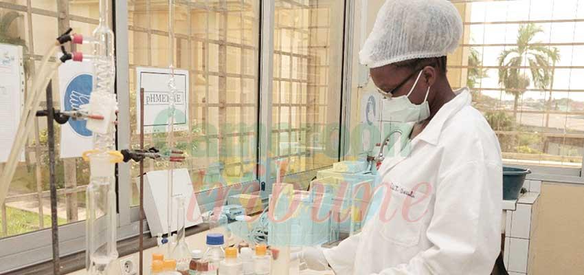Université de Douala : les connexions du pôle technologique