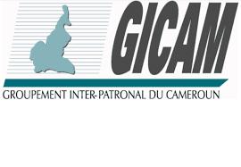 Climat des affaires : le Gicam présente les freins à l'activité économique