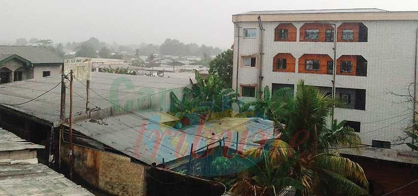 Climat : ces pluies inatendues…