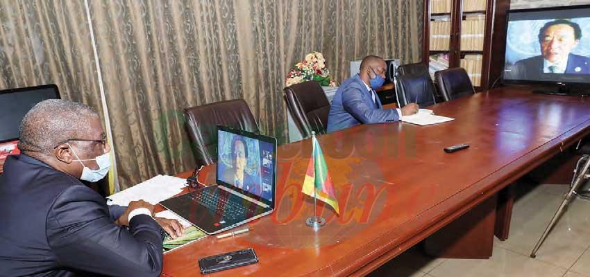 164 e session du conseil de la FAO  : le Cameroun, voix de l'Afrique