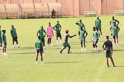 2019 AFCON:Indomitable Lions Return Home