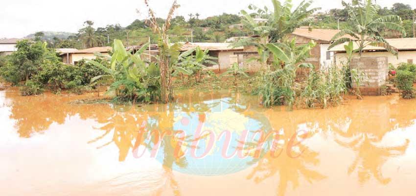 Yaoundé : état d'alerte dans les marécages