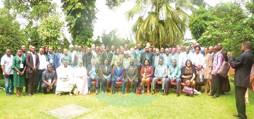 Congo Basin Forest Partnership : NGOs Seek Harmonisation of Operations