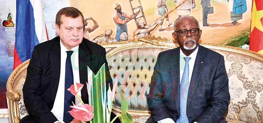 Socio-political Situation in Cameroon : Russia Against Foreign Intervention