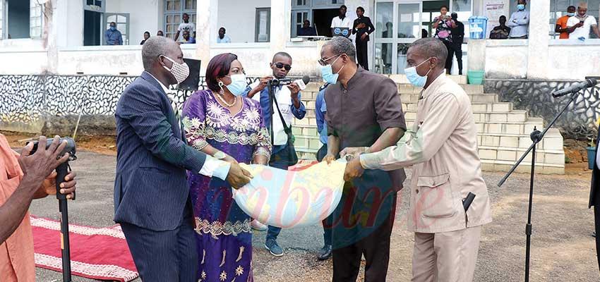 Kribi : des semences de maïs pour 5000 familles
