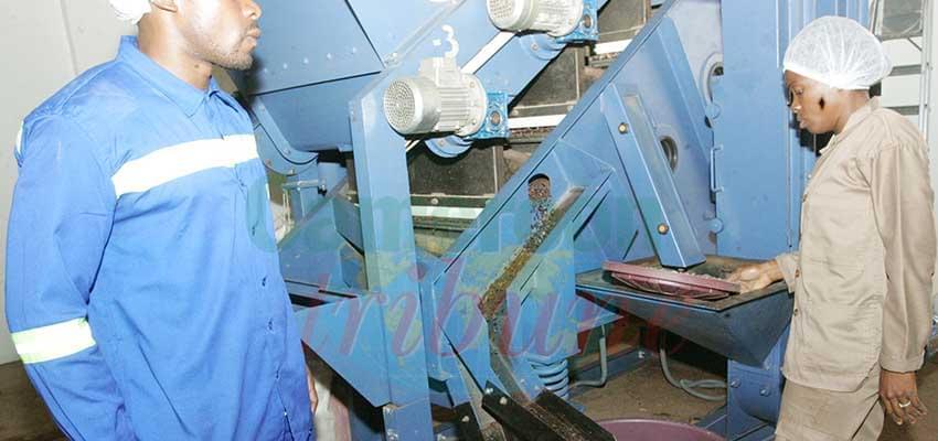 Epidémie de Covid-19 : une opportunité pour le Made in Cameroon