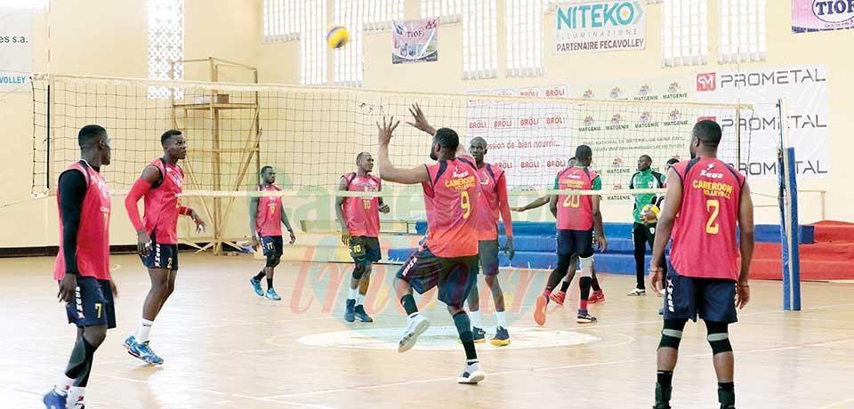 CAN Volley-ball messieurs : les Lions poursuivent leur stage