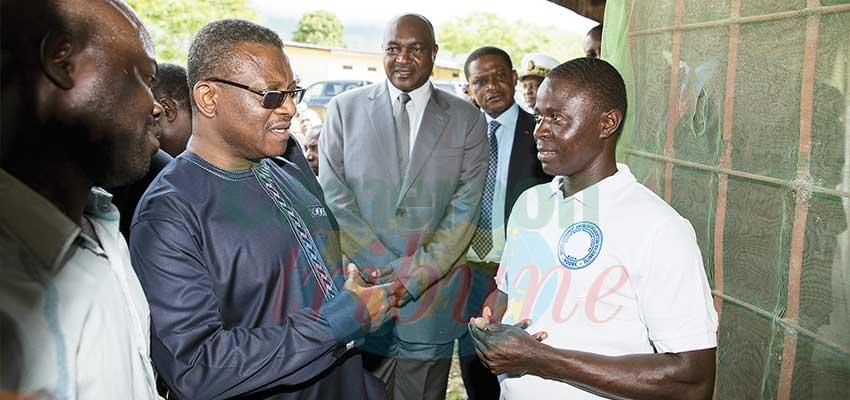 Upheavals In NW/SW Regions: Post Dion Ngute Visit Raises Expectations