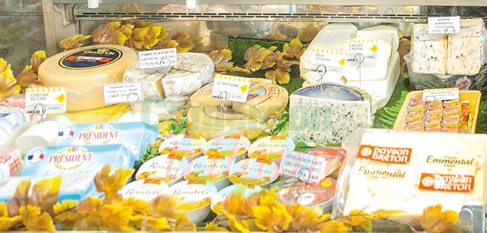 Comptoirs : le fromage dans tous ses états