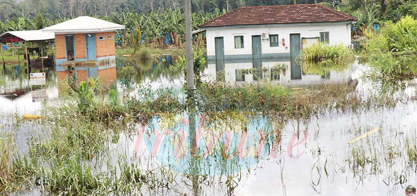 Océan  : le Nyong inonde trois villages