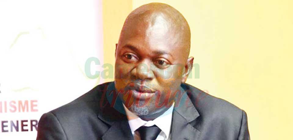 Manassé Aboya Endong, professeur de science politique et directeur exécutif du Groupe de recherches sur le parlementarisme et la démocratie en Afrique (GREPDA).