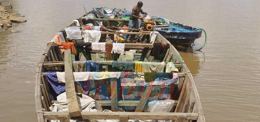 Transport clandestin : 226 migrants secourus