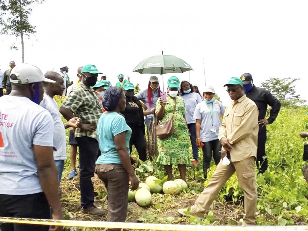 Coopératives productrices de manioc : on veut accroître les capacités de transformation