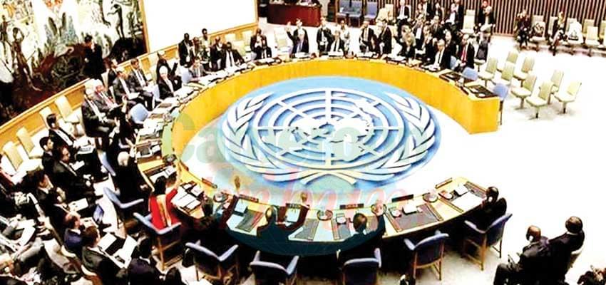 Lutte contre l'extrémisme violent et le terrorisme : l'ONU conforte le Cameroun