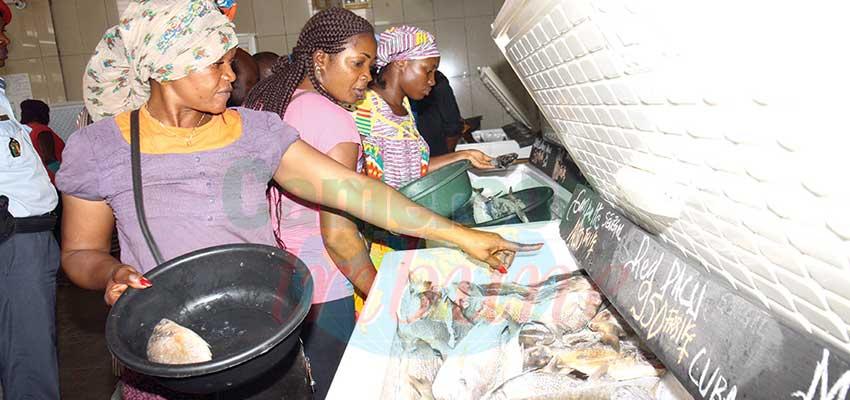 L'économie camerounaise grippée