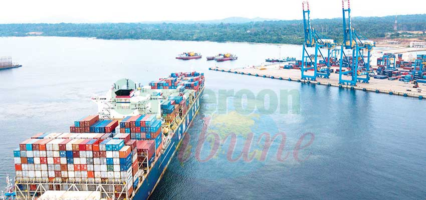 Gestion du terminal du Port de Kribi : des investisseurs locaux se positionnent