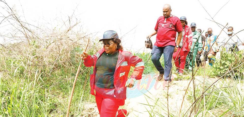 Propriétés foncières du Ceneema : l'immatriculation lancée à Nanga -Eboko