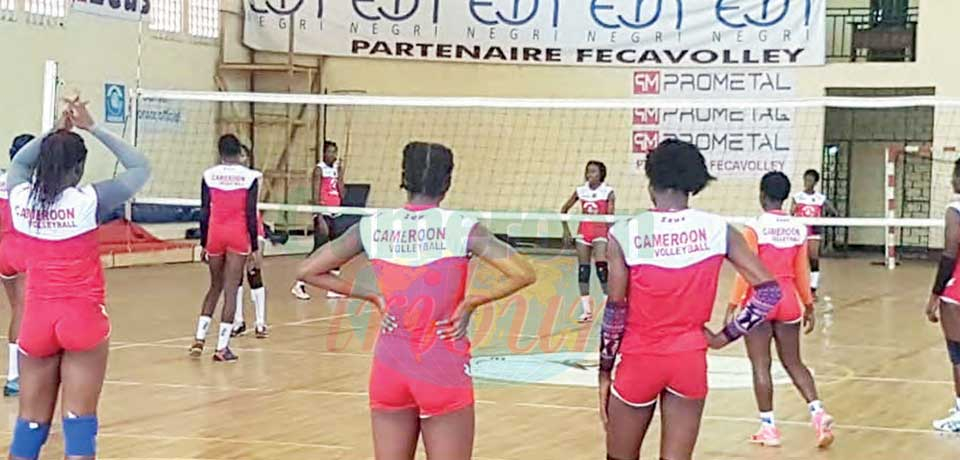 African Women's Volleyball Championship : Professional Players Still Awaited