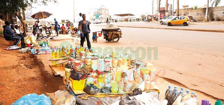 Adamaoua  : les transactions foncières suspendues