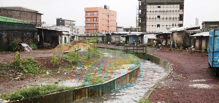 Eaux pluviales : les drains font du bien