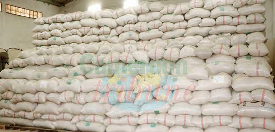 Céréales : 10 000 sacs pour l'Extrême-Nord