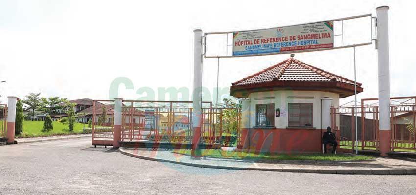 Dja-et-Lobo : deux foyers de choléra découverts