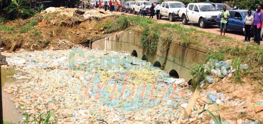 Environment Day : Population Enjoined to Adopt Friendly Habits